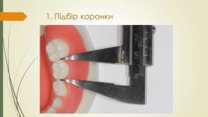 ▒РЮМДЮПМШЕ ЙНПНМЙ и_Ковнацкий_4